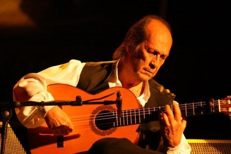 CAF_Flamenco_en_Luto