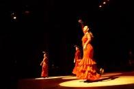 Luna Flamenca Sao Carlos04