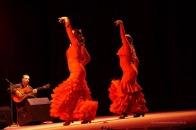 Luna Flamenca Sao Carlos05