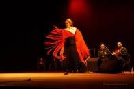 Luna Flamenca Sao Carlos10