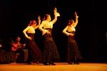 Luna Flamenca Sao Carlos13
