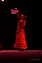 Luna Flamenca Sao Carlos16