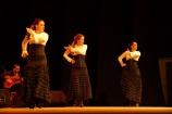 Luna Flamenca Sao Carlos17