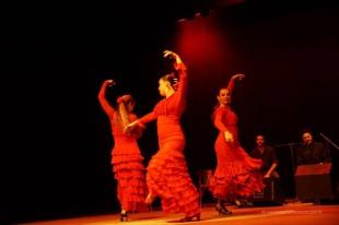 Luna Flamenca Sao Carlos19