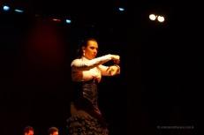 Luna Flamenca Sao Carlos25