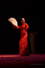 Luna Flamenca Sao Carlos35