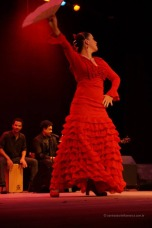 Luna Flamenca Sao Carlos37